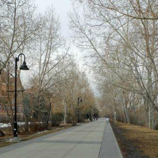Calgary Pathway System in Calgary, Alberta