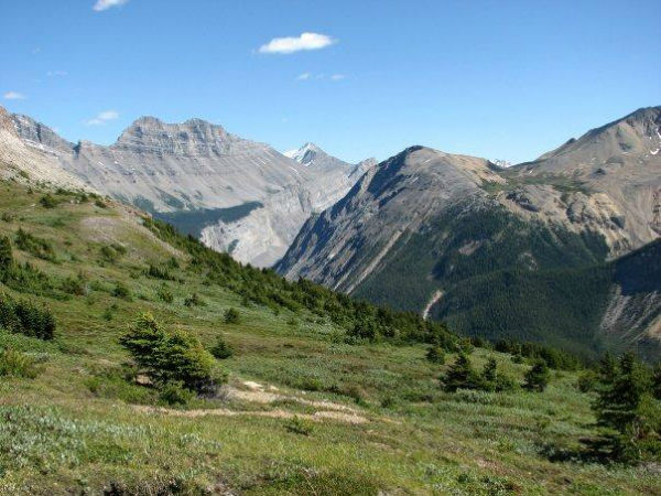 Parker Ridge Trail, Banff, Alberta
